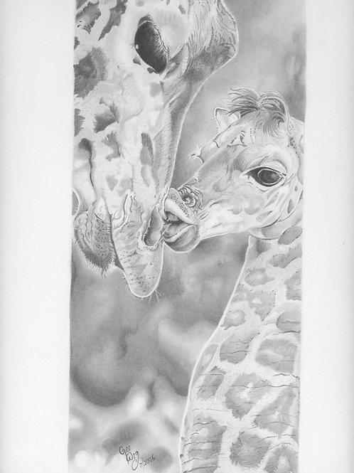 """""""Mommy & Baby Giraffe"""""""