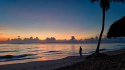 Canva - Silhouette of a Person Near Coco