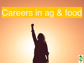 woman success arm in the air careers log