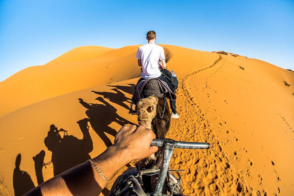 Désert de Merzouga Sahara Dromadaire Maroc