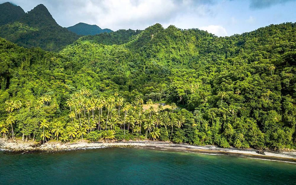 Préparer son voyage en Martinique
