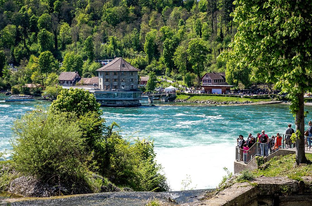 Chutes du Rhin Rheinfall Suisse