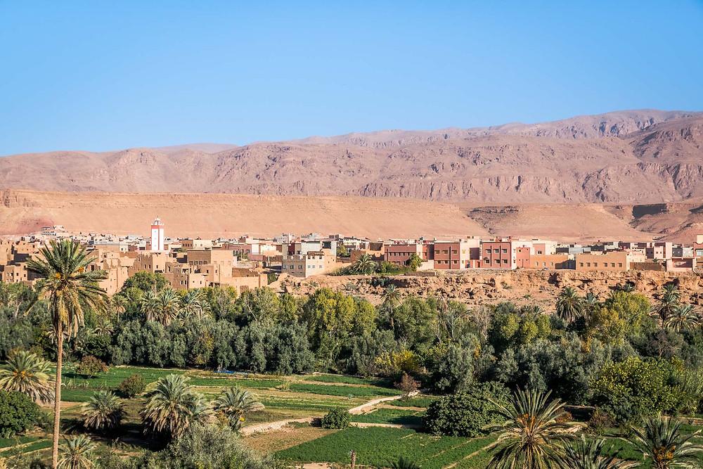 Palmeraie de Tinghir, Maroc