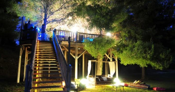 Bar dans les arbres Marseille