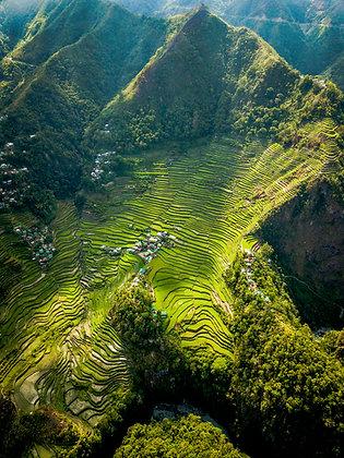 Rizières des Philippines