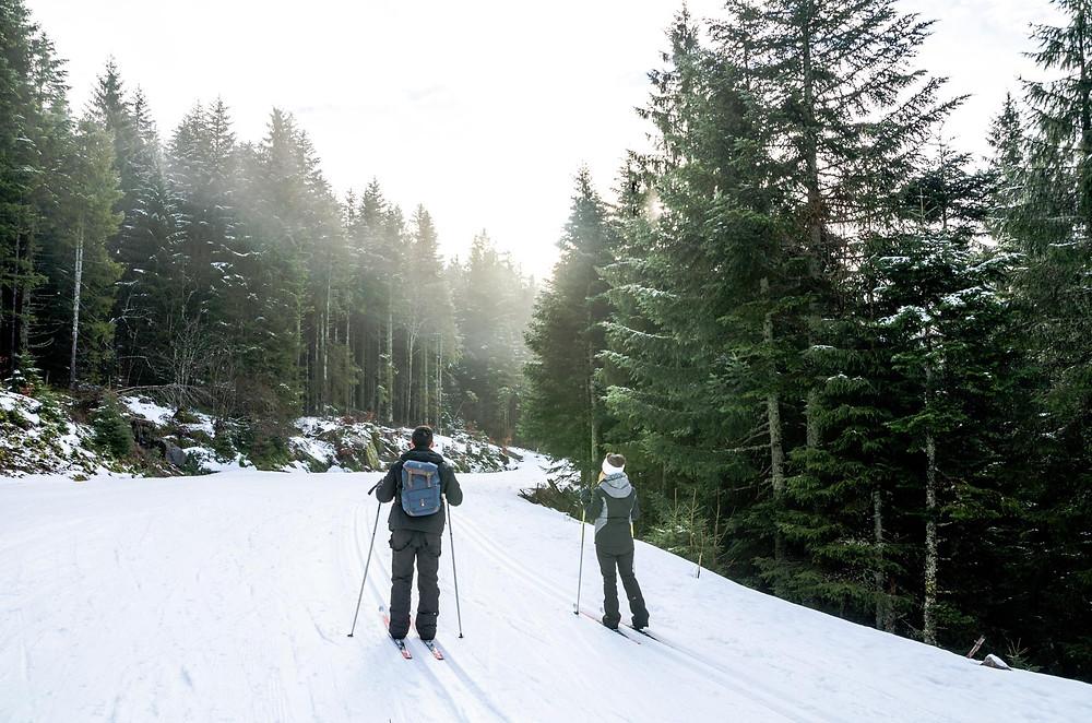 Sens à sons nature, biathlon, Gérardmer, Massif des Vosges