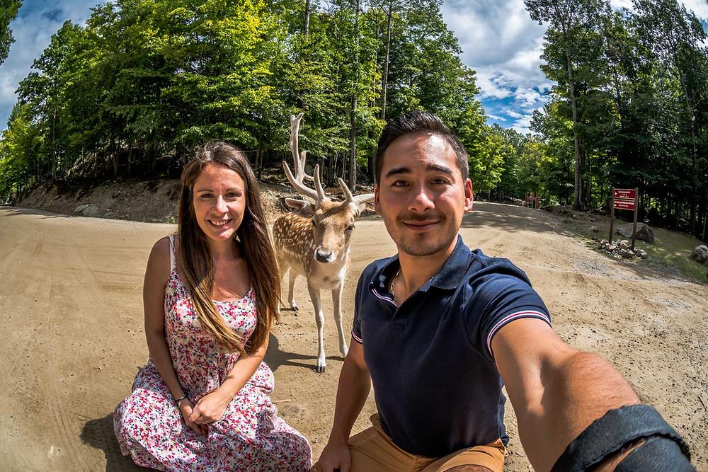 Parc Omega Quebec Canada