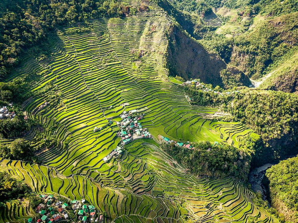 Rizière Philippines Batad