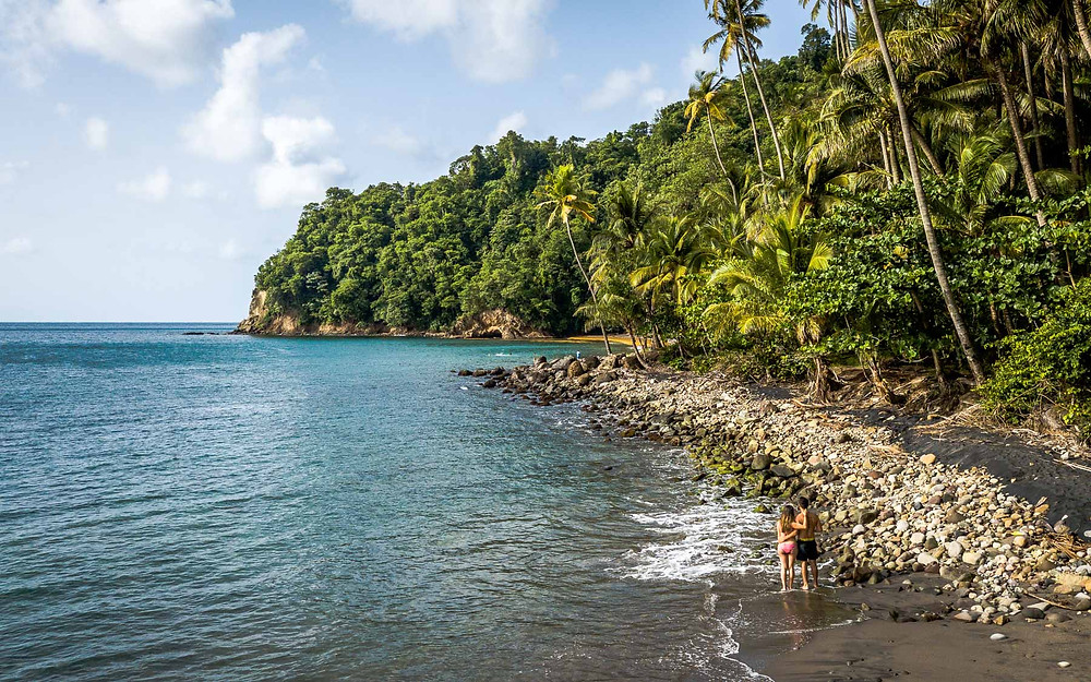 Anse Couleuvre, Martinique