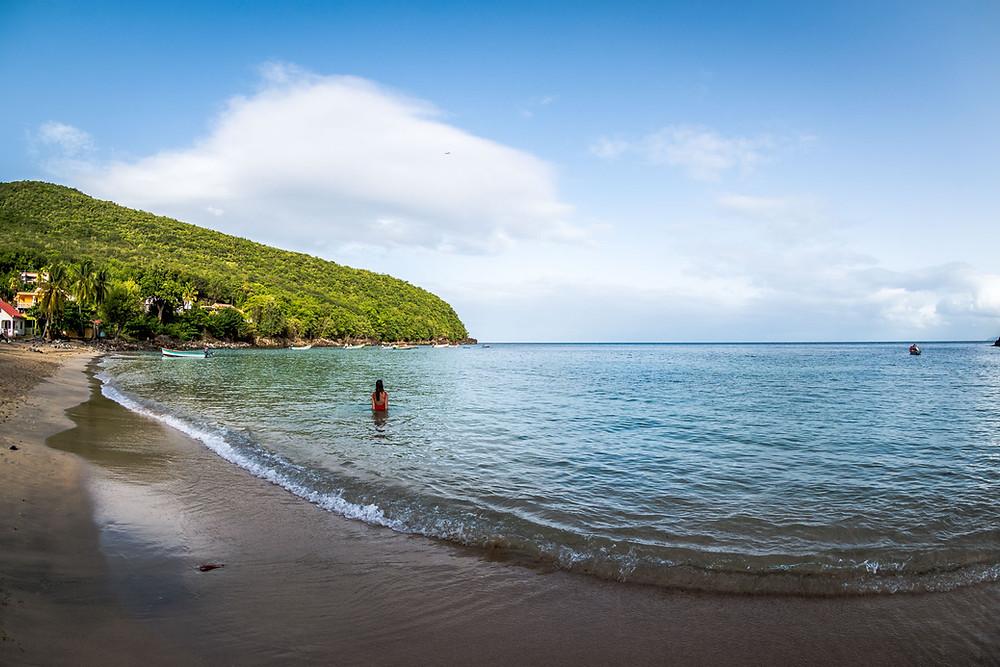 Anse Dufour Nager avec les Tortues Martinique