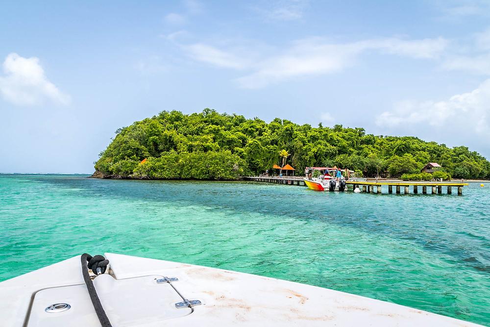 Bateau Ile Martinique