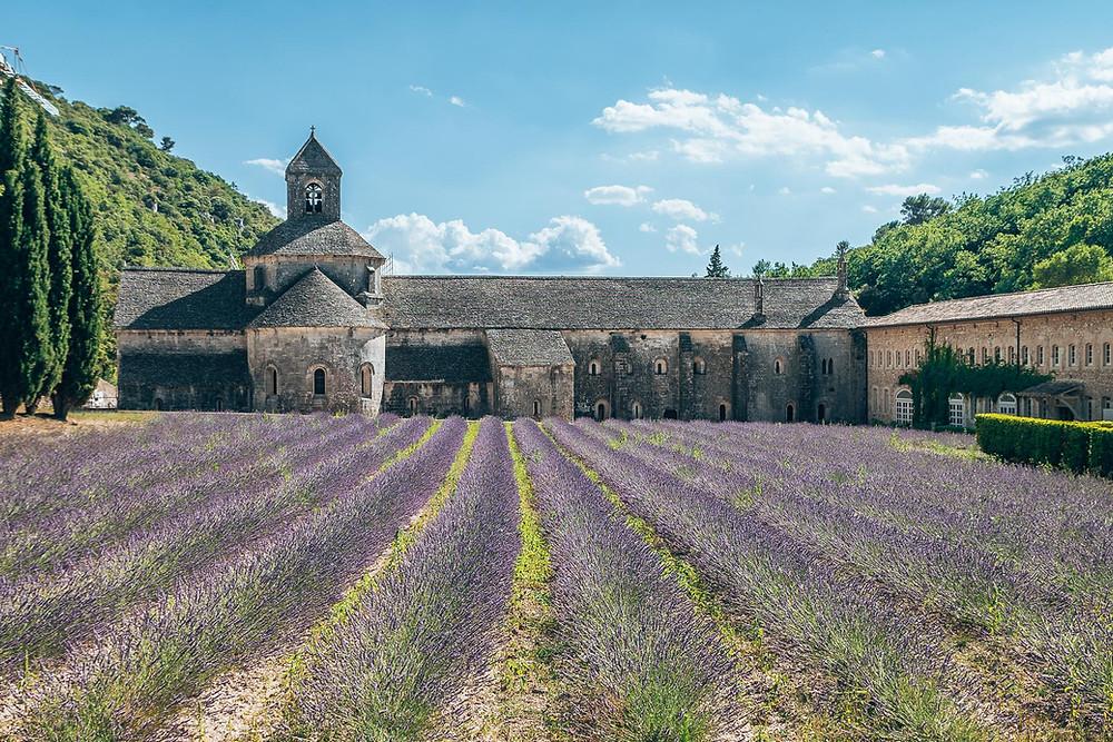 Abbaye de SenanqueGordes