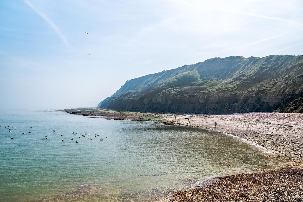 Plage de coquillages, Port-en-Bessin