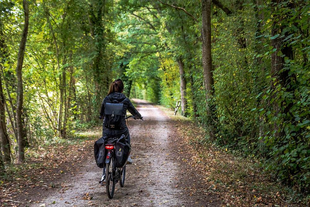 Véloscénie de Sceaux à Versailles en vélo