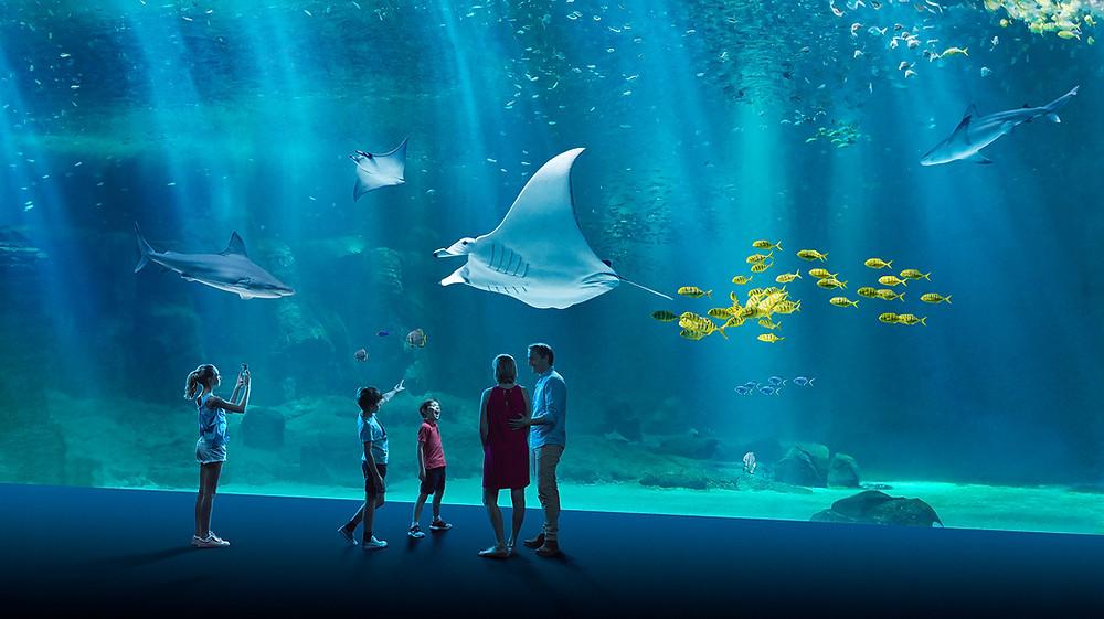 aquarium de Nausicaa