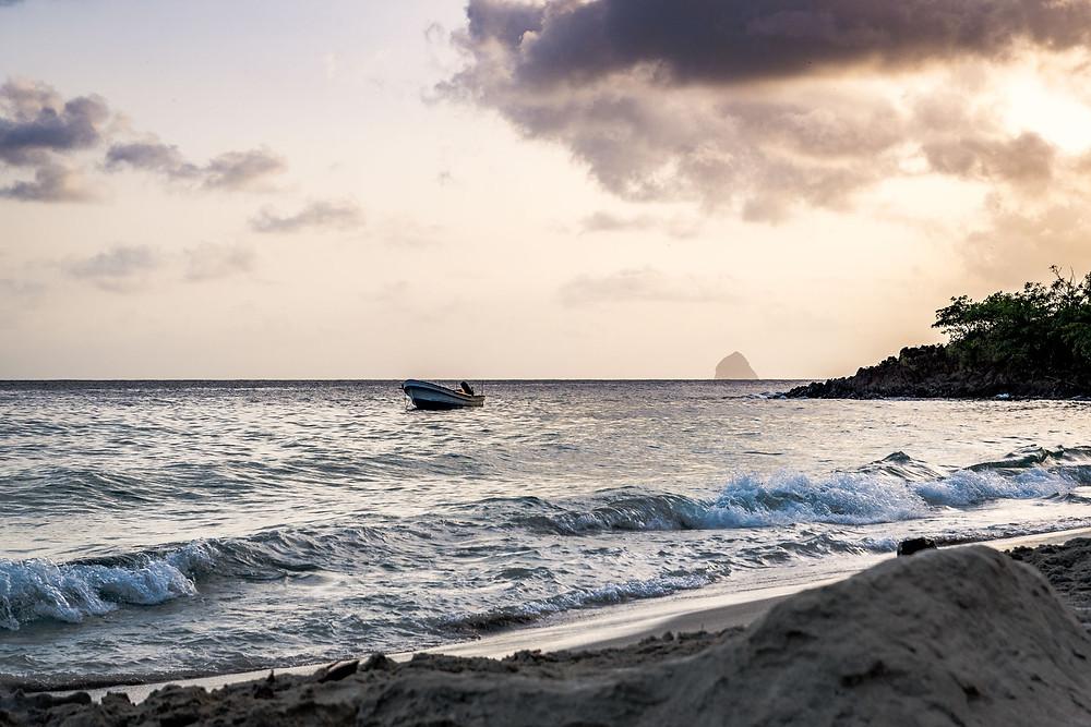 l'Anse Figuier, Martinique