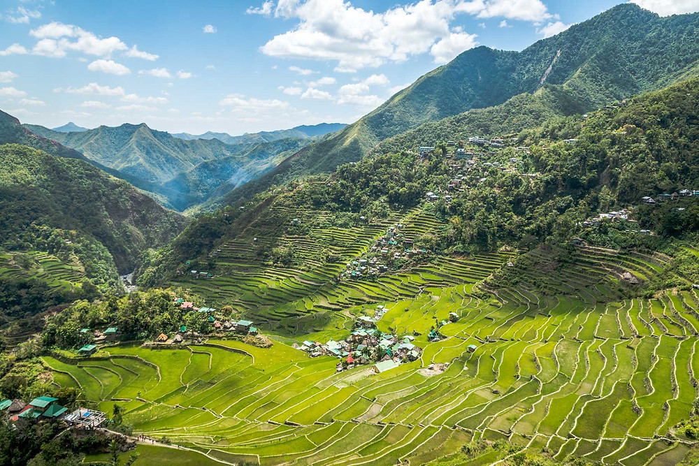 Rizières de Batad Philippines