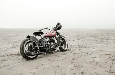 Harley JFP_6500.jpg