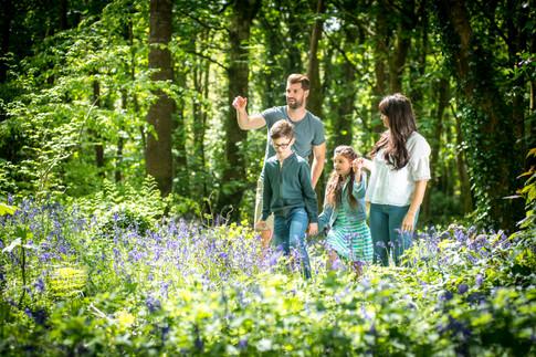 family walking through bluebells
