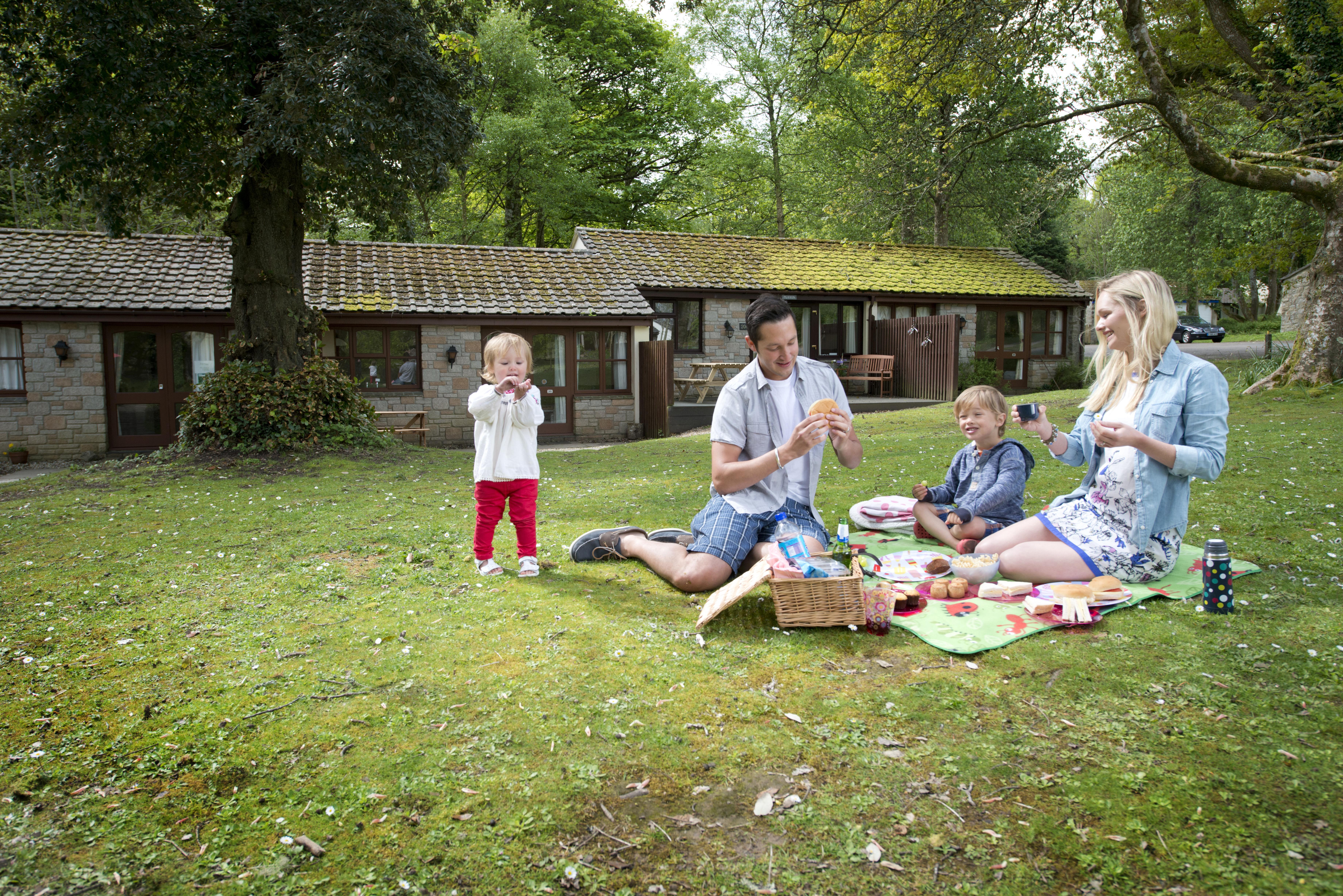 St Ives family picnic