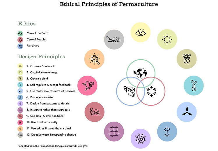 UFB Ethics and Principles Updated.jpeg