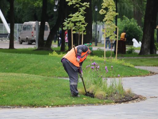 Полмиллиарда рублей затратят на благоустройство дворов и парков в регионе