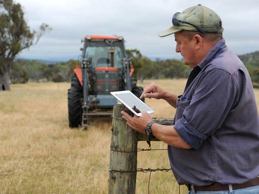 Аграриям Липецкой области доступны льготные кредиты на цифровизацию хозяйств