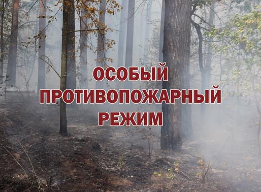 МЧС России напоминает: особый противопожарный режим в Липецкой области продлен до 31 октября