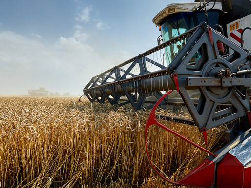 Предприятия АПК Липецкой области повышают конкурентоспособность