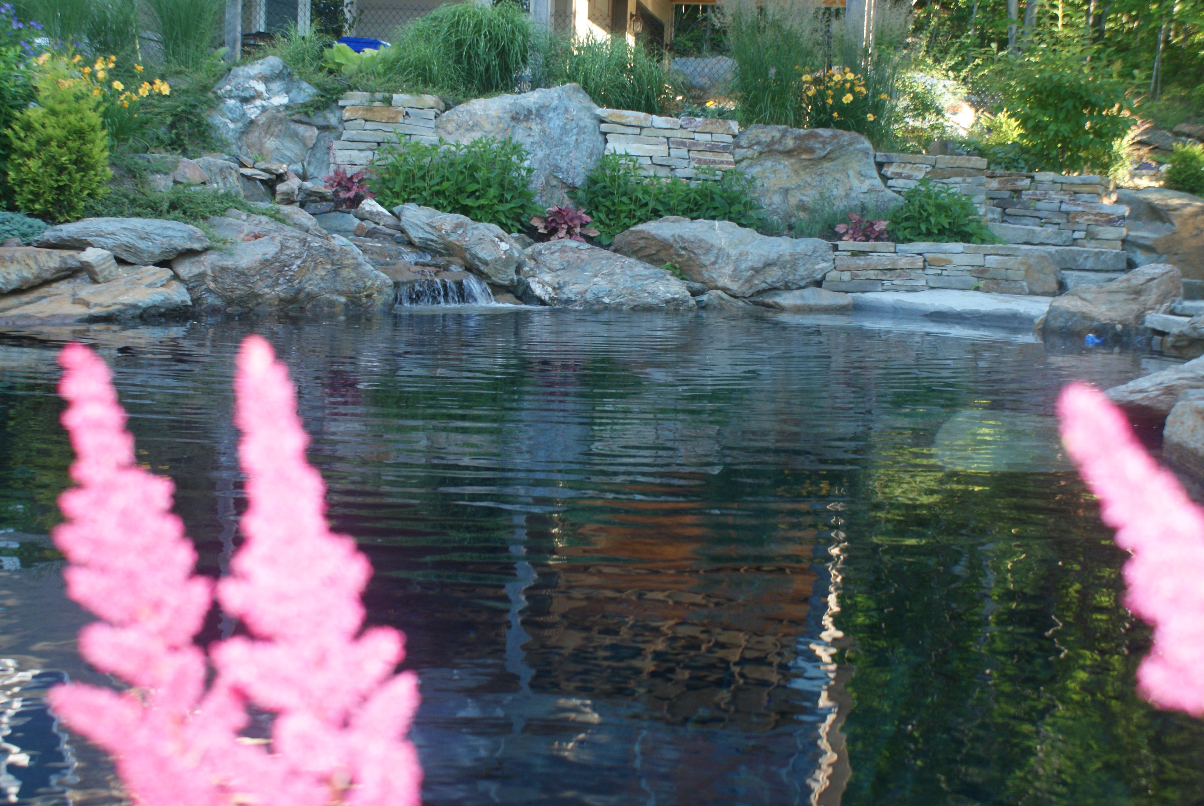 bassin naturel pour la baignade