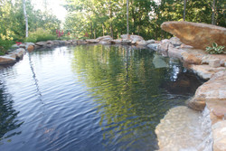 Piscine ou bassin pour la baignade