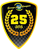 LOGO 25 ANS.png