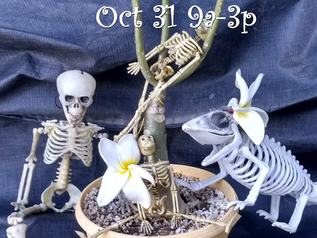 Halloween SPOOKTACULAR SALE Sat Oct. 31