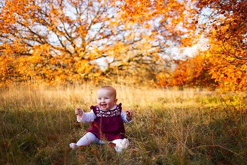 Autumn Lifestyle Minis