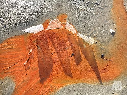 Ice Shadows 11x16.5 Print