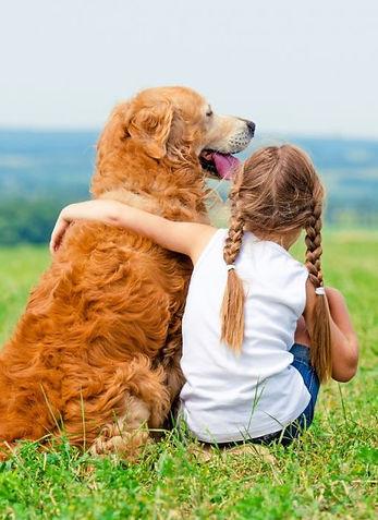 tackling-a-dog-that-is-aggressive-toward