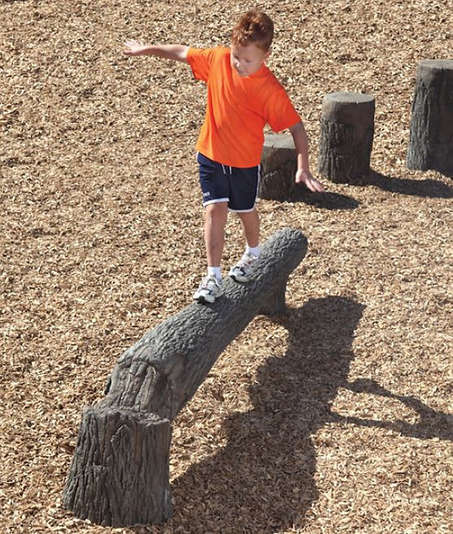 8' Fallen Tree Balance Beam