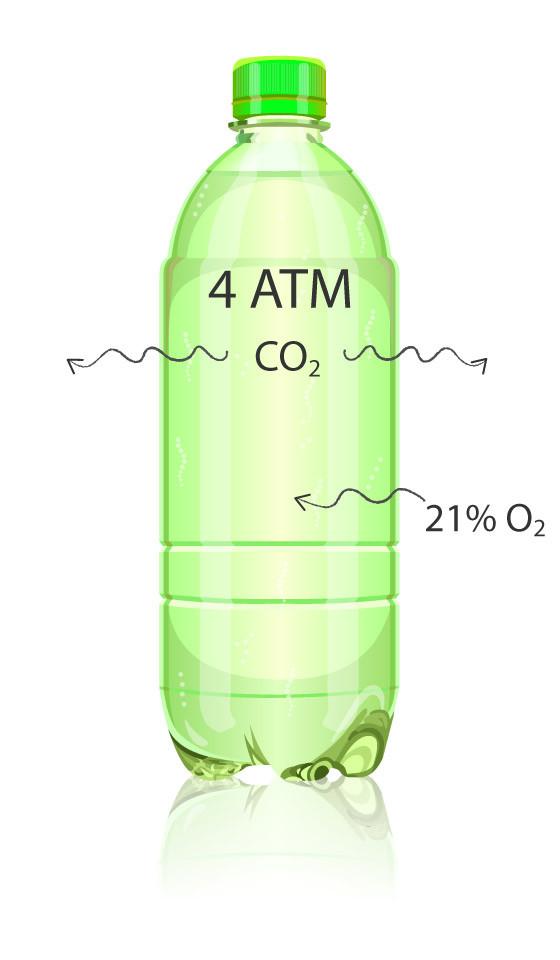 Figure 1. CO2 Filled Bottle
