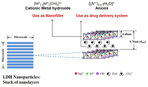 Figure 1. Structure of nanoparticle LDH
