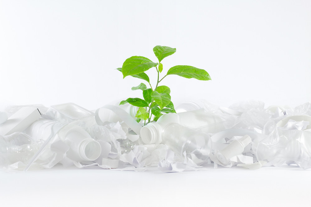 Sustainable Plastic Packaging