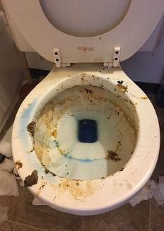 Before Toilet Bad.JPG