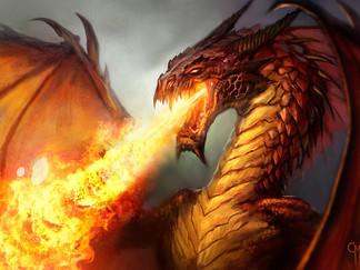 Les Dragons débarquent à la boutique !