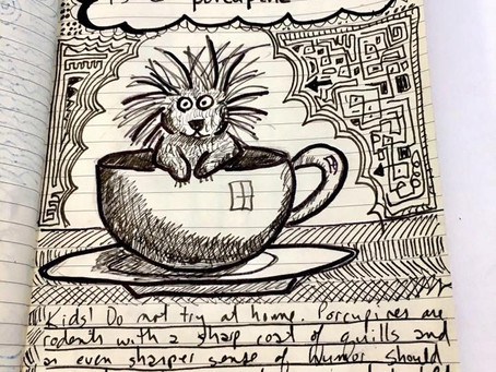 A Porcupine in a Cup