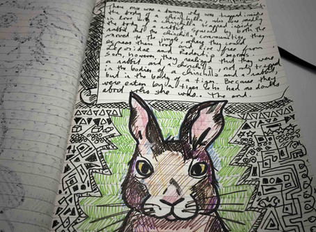 A Tale of a Bunny and a Chinchilla