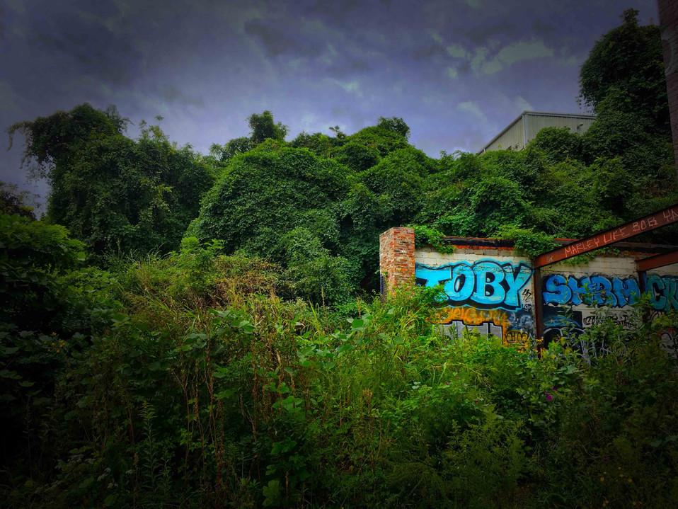 Toby graffiti, Asheville, North Carolina