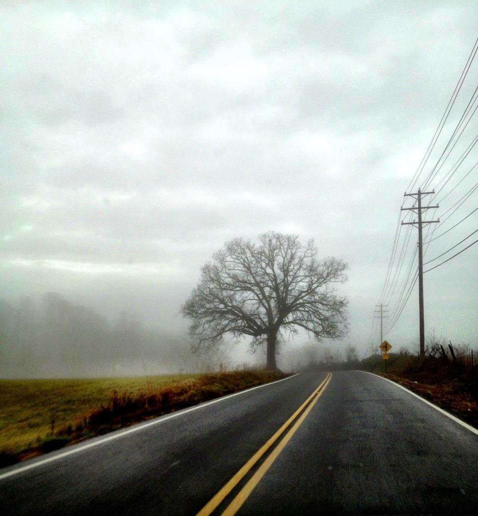 US 81, Tennessee