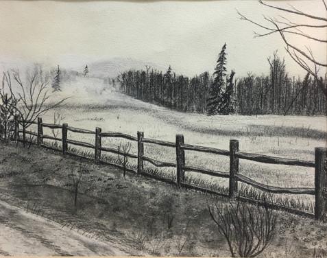 Uncle Art's Fence