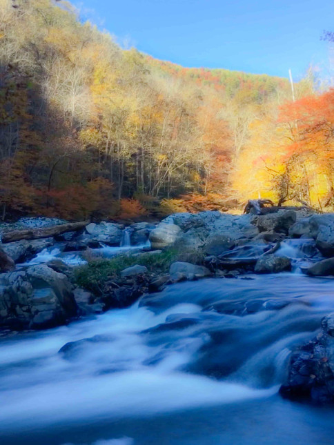 Laurel River, North Carolina