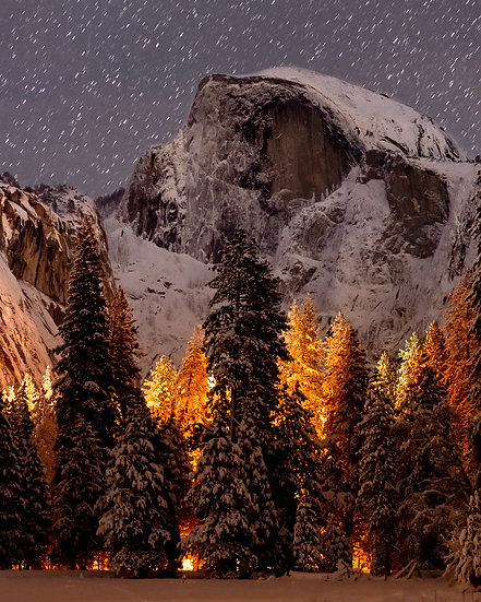 Half Dome Above the Trees
