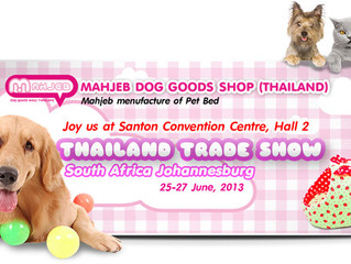 Thailand Exhibition Show 2013 – Johannesburg South Africa